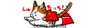 Beans72BuckwheatPillow